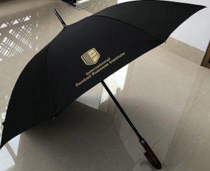 IFBI-paraplu-1.jpeg