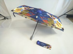 Arte paraplu
